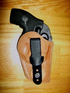 Cover Up for Ruger LCR